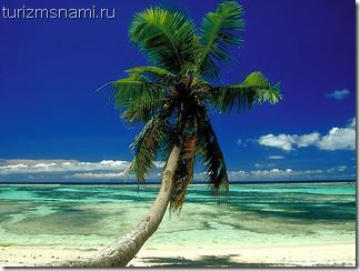 Отдых на Сейшельских острвах