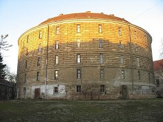 Башня сумасшедших или Музей патологоанатомии в Вене