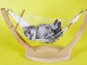 Как вы любите отдыхать