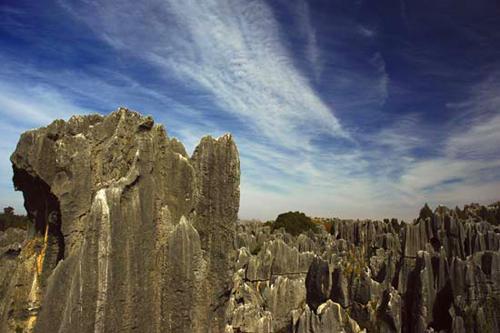 Китай, Каменный лес
