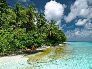 Природа Мальдивских островов
